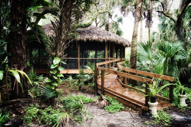 Début de la matinée à l'intérieur de forêt subtropicale avec la hutte couverte de chaume photo stock