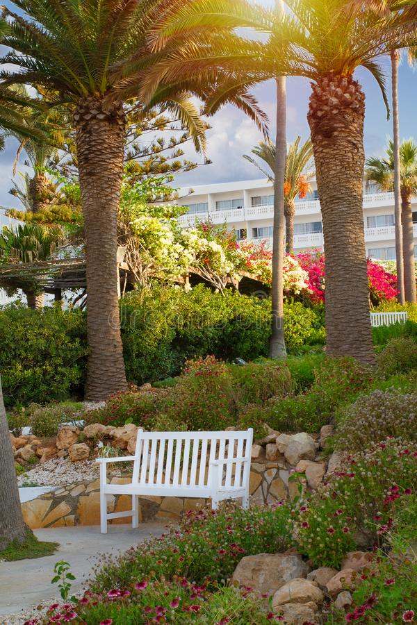 D?but de la matin?e dans le beau jardin tropical avec le banc blanc simple dans Ayia Napa, Chypre, c?te de la mer M?diterran?e images stock