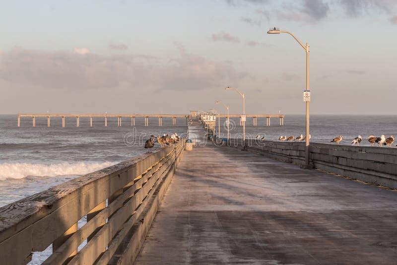 Début de la matinée sur le pilier de pêche de plage d'océan photographie stock