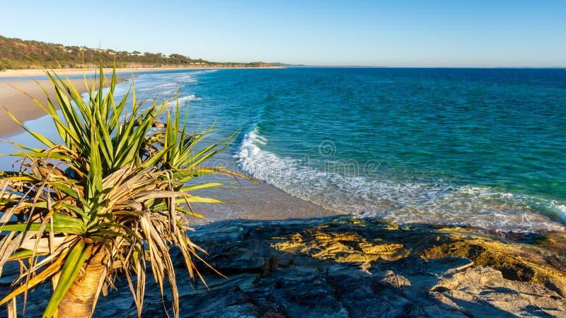 Début de la matinée sur une plage australienne photos libres de droits