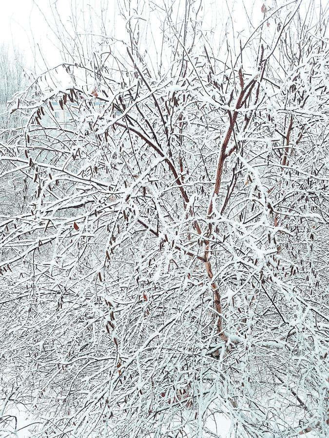 Début inattendu de l'hiver le premier jour de décembre photographie stock libre de droits