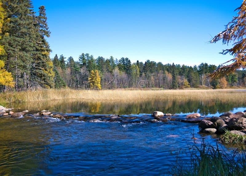 Début officiel du fleuve Mississippi au parc d'état d'Itasca de lac, Minnesota photographie stock