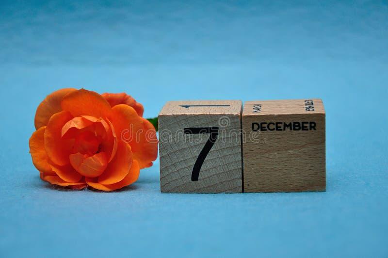 7 d?cembre sur les blocs en bois avec une rose orange image libre de droits