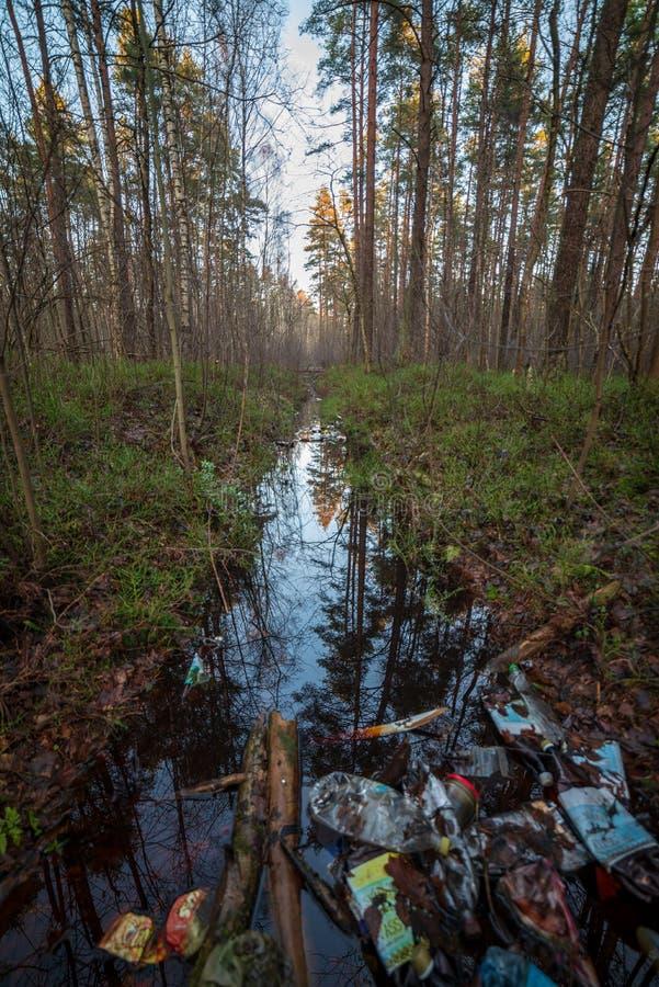 décharge illégal dans la forêt humide humide en automne images libres de droits