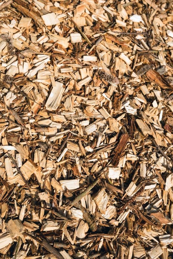Déchets de bois étroits image libre de droits