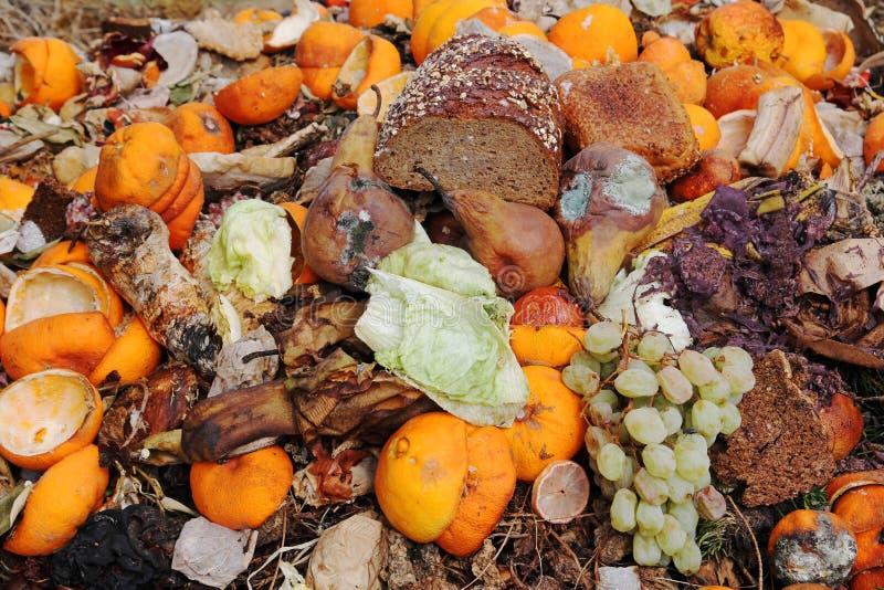 Déchets organiques photo stock