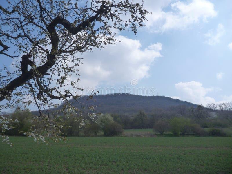 Déchirure nationale traditionnelle tchèque de montagne images libres de droits