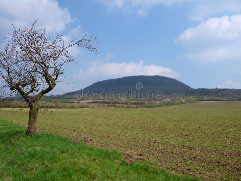 Déchirure nationale traditionnelle tchèque de montagne image stock