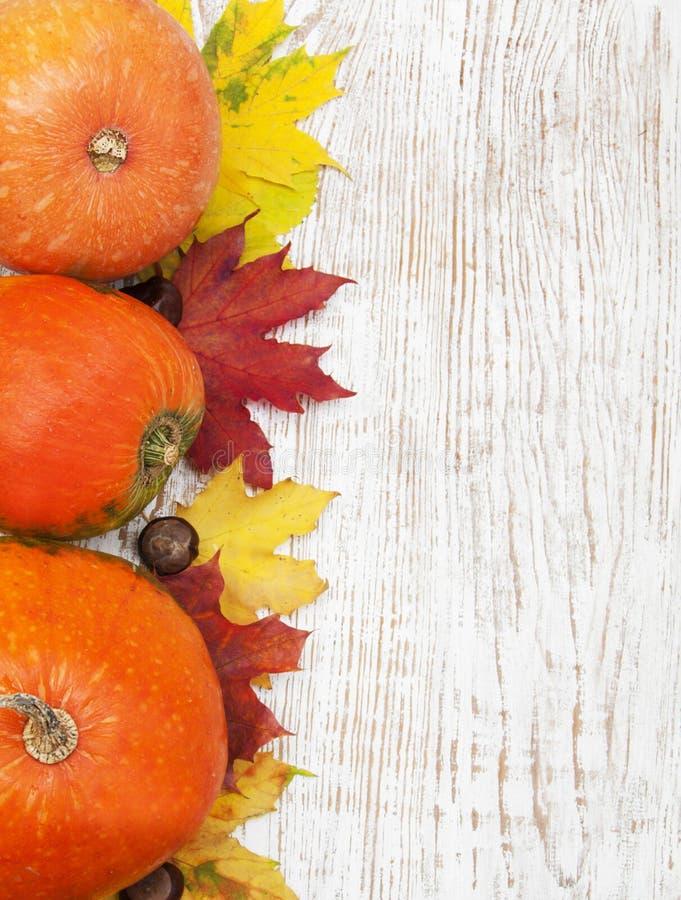 Download Décoration d'automne image stock. Image du automne, abondant - 45371297