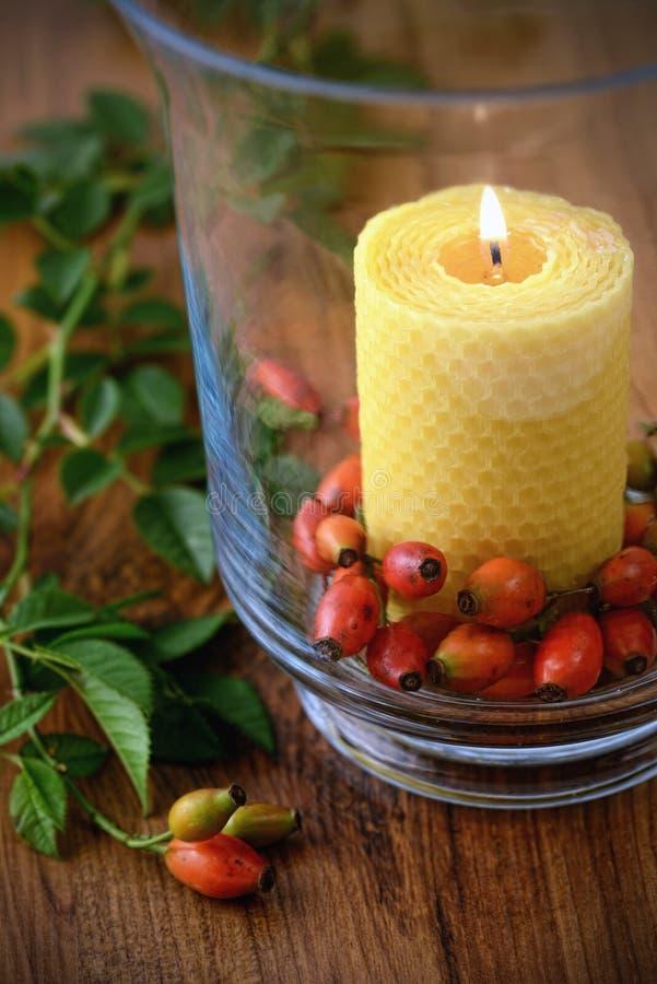 Download Décoration D'automne Avec Les Cynorrhodons Et La Bougie Brûlante En Verre Photo stock - Image du brûlure, rose: 76077990