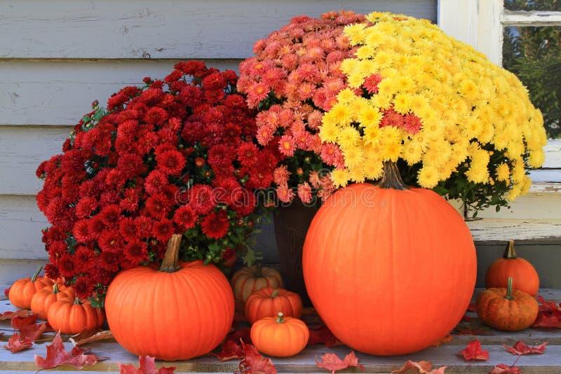 Décoration d'automne et de thanksgiving photos stock