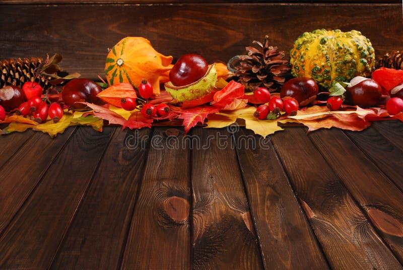 Décoration d'automne sur le fond en bois photo stock