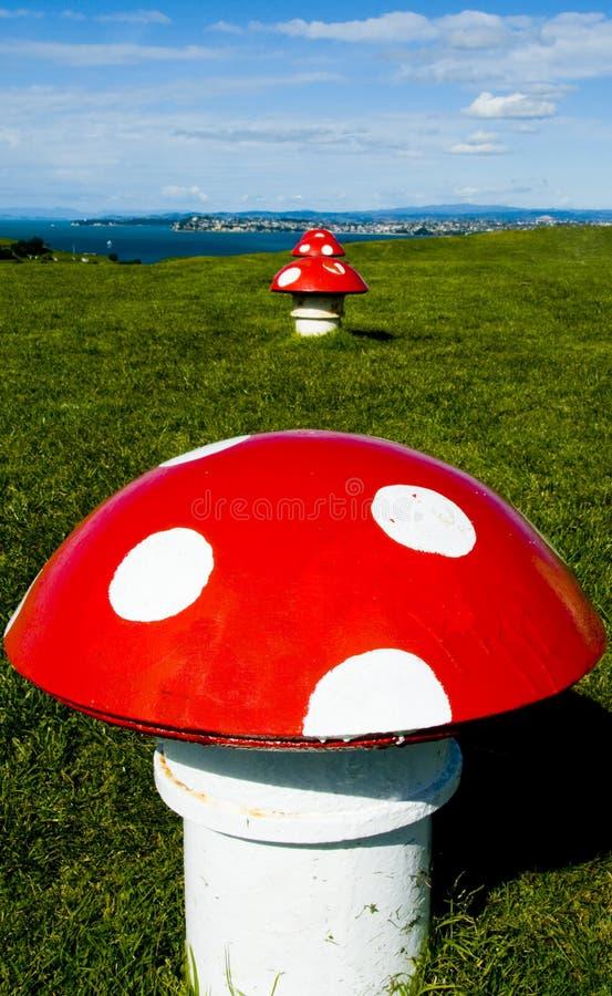 Décoration de champignon de couche images libres de droits