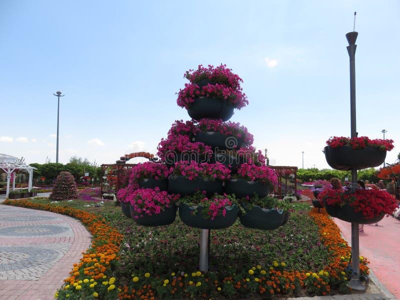 Décoration de fleur de stupéfaction sur la promenade images stock