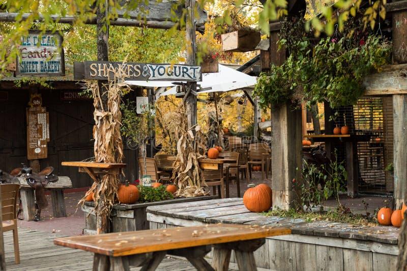 Décoration de Halloween avec des potirons d'une terrasse fermée des affaires dans Winthrop photos stock