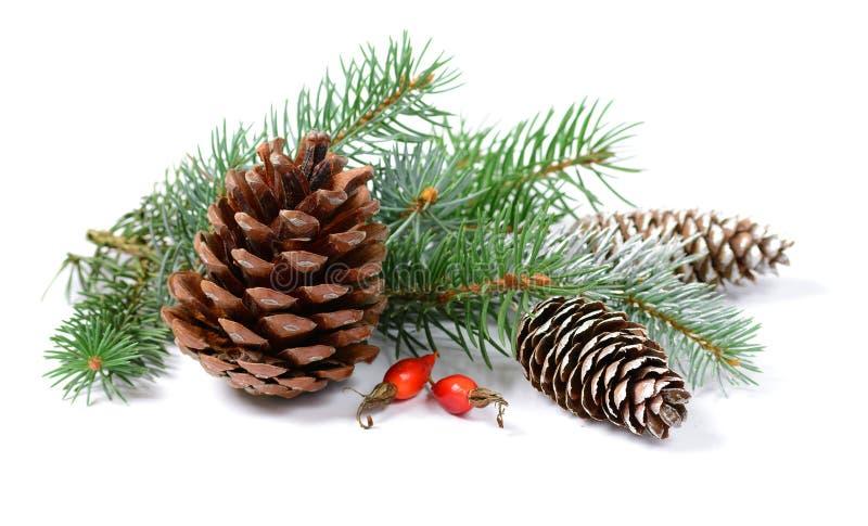 Décoration de Noël avec l'arbre de sapin et cônes d'isolement sur un fond blanc image stock