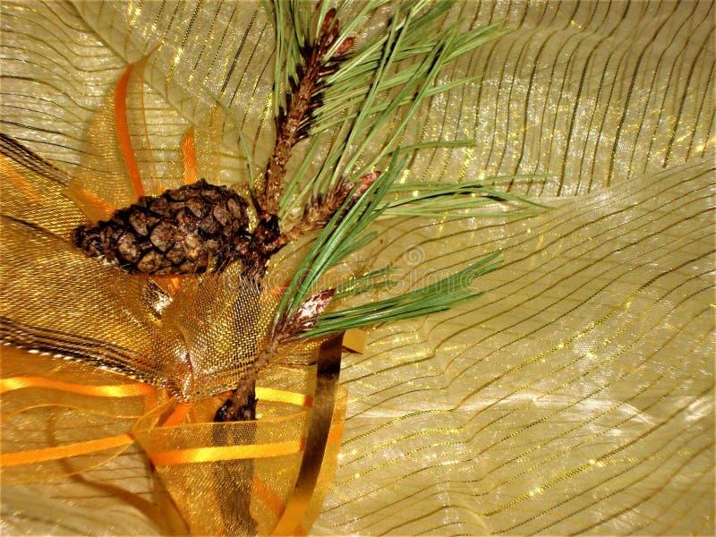 Décoration de Noël avec la branche du pin images libres de droits