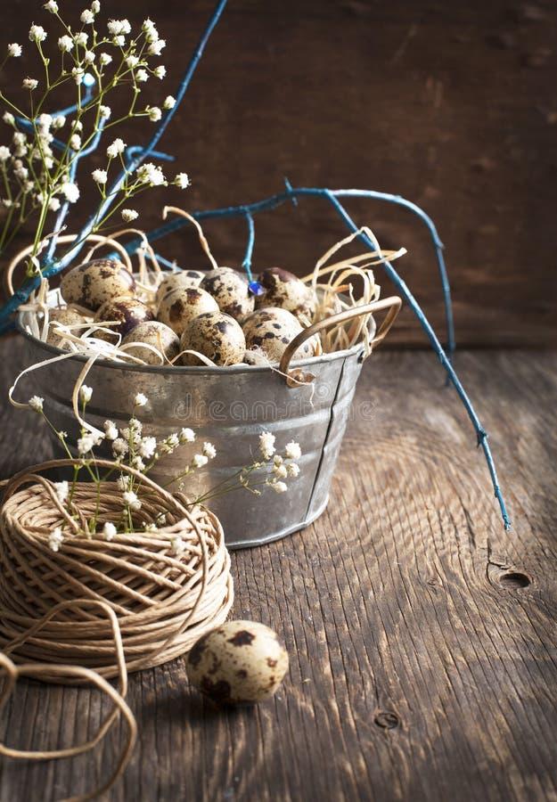 Décoration de Pâques avec des oeufs et des branches de caille photo stock