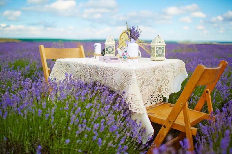 Décoration de Tableau en fleurs de lavande photo stock