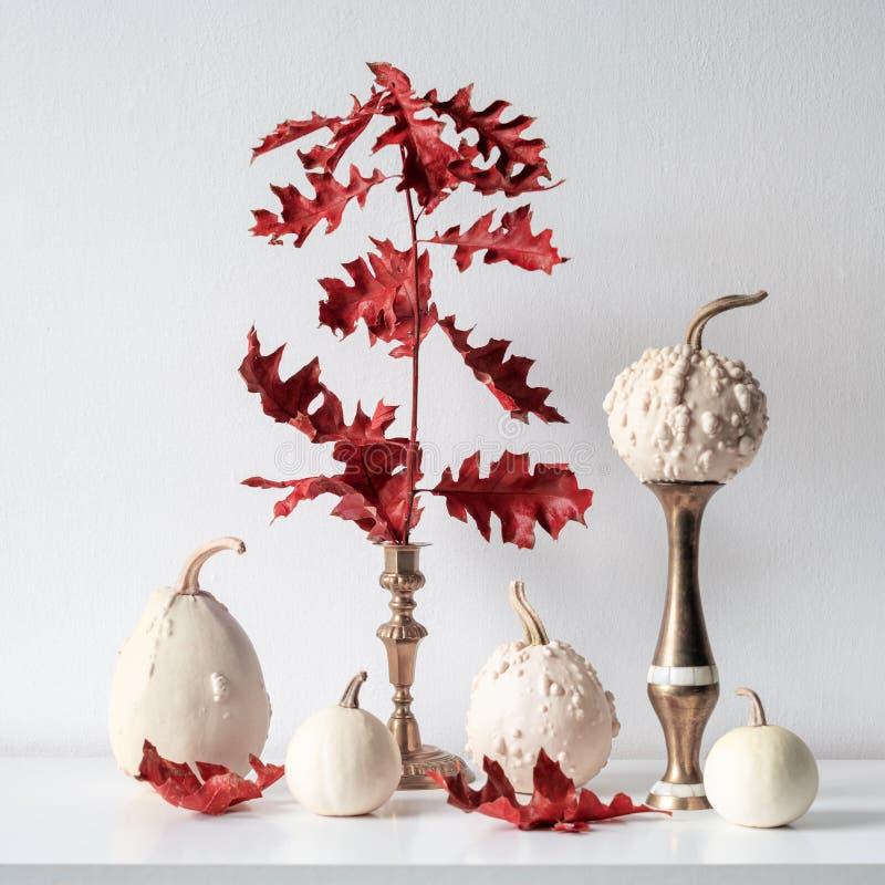 Décoration de thanksgiving L'automne minimal a inspiré la décoration de pièce Sélection de divers potirons sur l'étagère blanche photos libres de droits