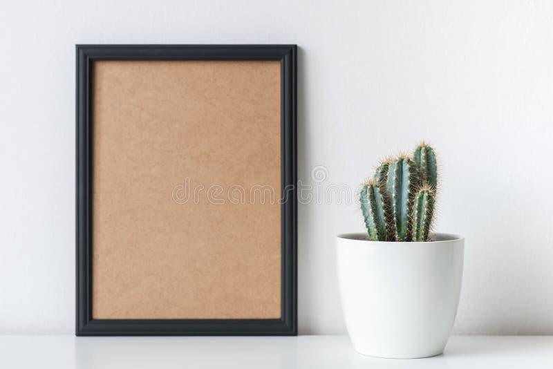 Décoration moderne de pièce Usine de cactus dans le pot de fleur blanche Maquette photos libres de droits