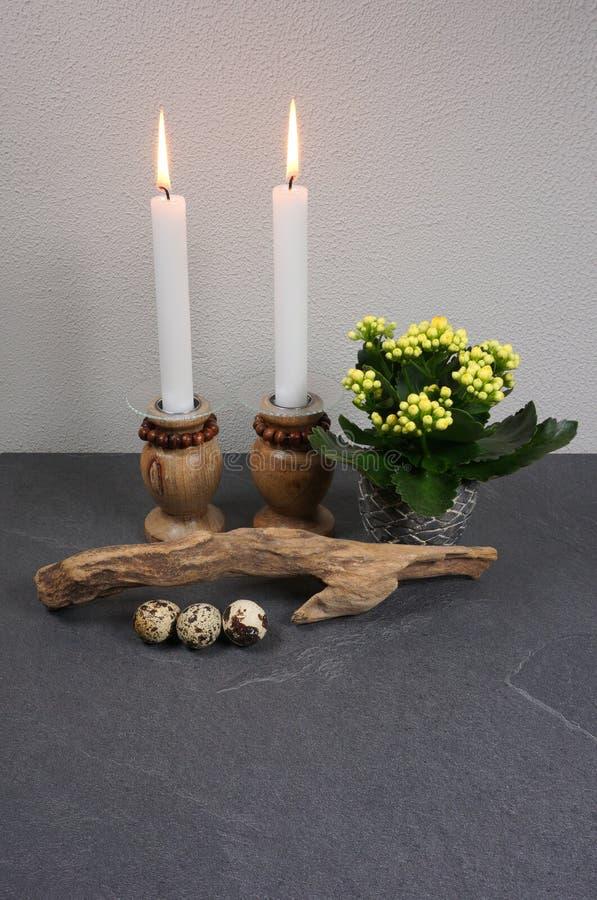 Décoration pour l'ambiance à la maison avec le blossfeldiana de kalanchoe de bougie et bois de flottage au fond en bois gris photos libres de droits