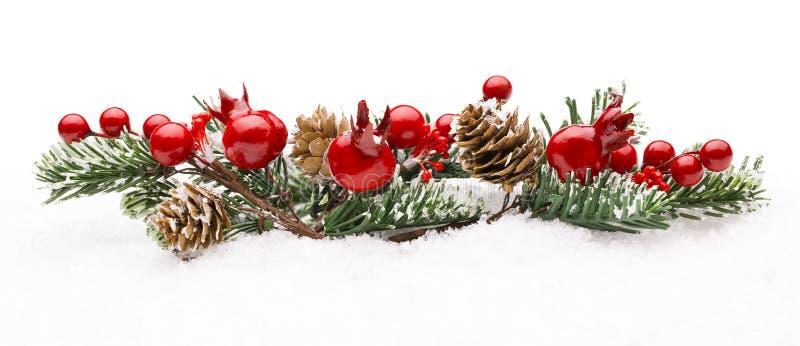 Décoration rouge de baies de Noël, Berry Branch Pine Tree Cone photographie stock