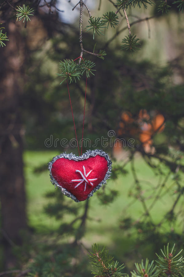 Décoration rouge de Noël de coeur accrochant sur l'arbre image libre de droits