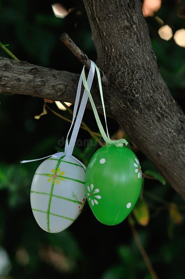 Décorations colorées d'oeuf de pâques accrochant dans un arbre photographie stock libre de droits