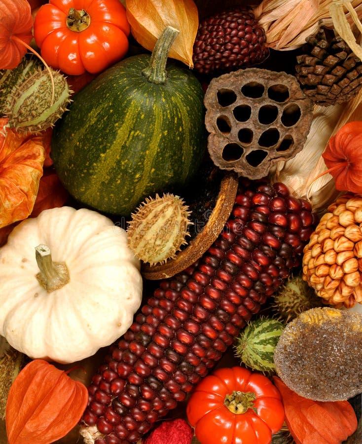 Décorations d'automne images libres de droits