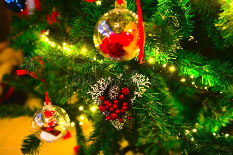 Décorations de Noël, aiguilles de pin et cône de pin, traditions de Noël images libres de droits