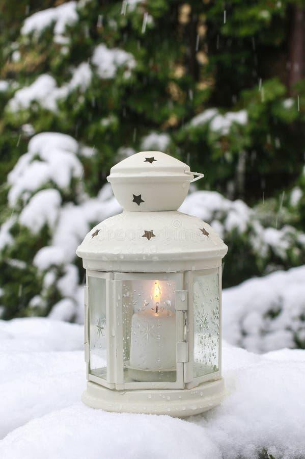 Décorations de Noël dans le jardin d'hiver photo stock
