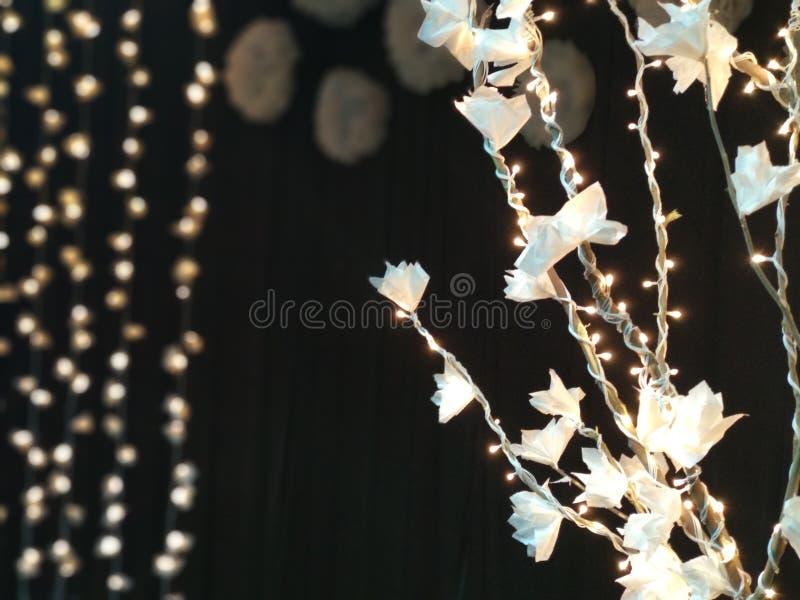 Décors à la maison avec les fleurs de papier et les lumières photos stock