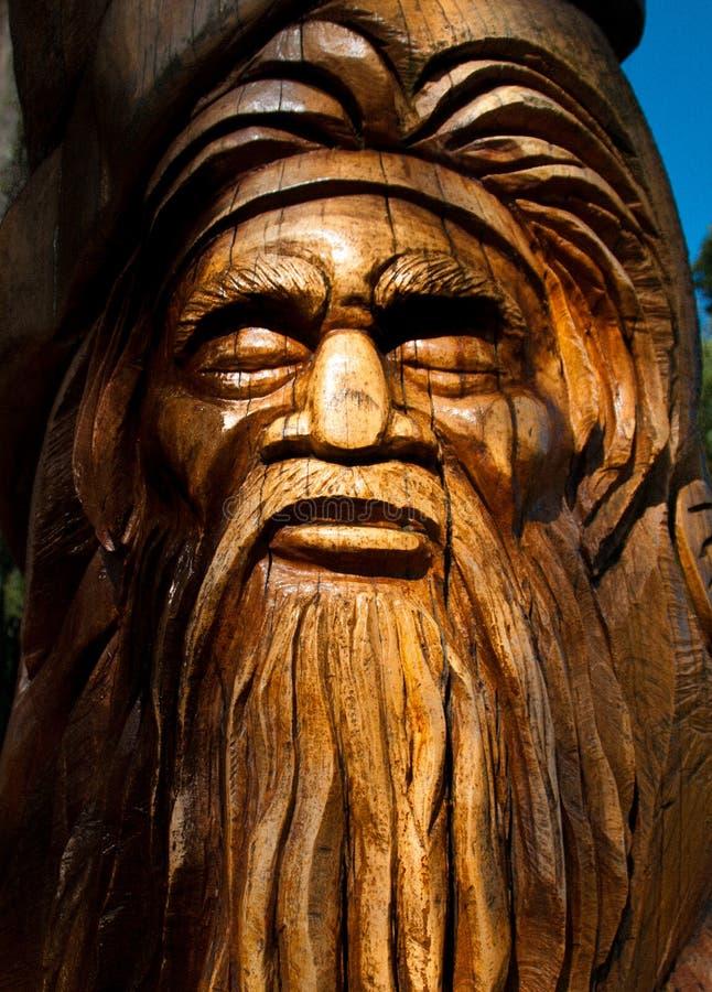 Découpage du bois d'arbre d'Australiana photo stock