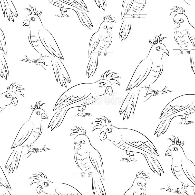 Découpes de perroquets, sans couture illustration libre de droits