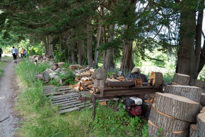 Découpeuse en bois de petite scierie se reposant avec des piles des rondins coupés photos libres de droits