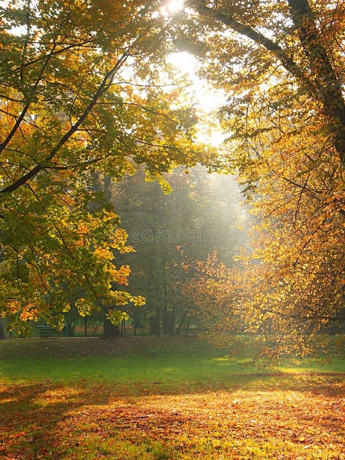 Découverte de lumière du soleil photographie stock