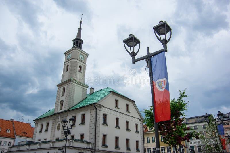 Défenseurs de Piast Gliwice image stock