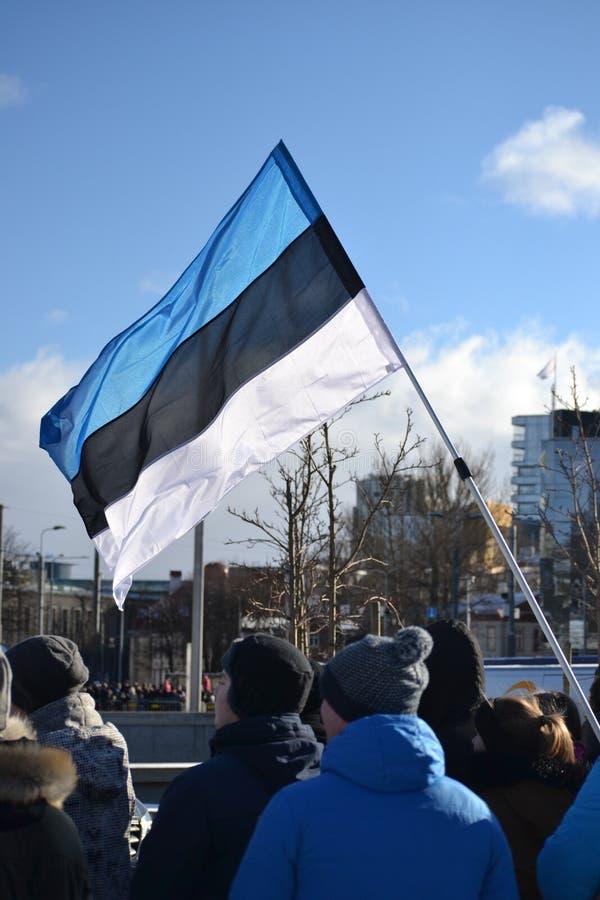 Défilé 2017 de Jour de la Déclaration d'Indépendance de l'Estonie images libres de droits