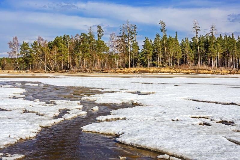 Dégel de la glace sur le fleuve Ob image libre de droits