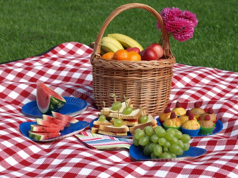 Déjeuner sur une herbe photos stock