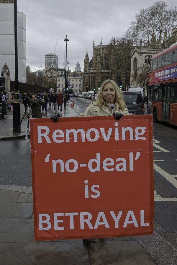 Démonstrateur à la maison du parlement dans Londen pour le brexit images libres de droits