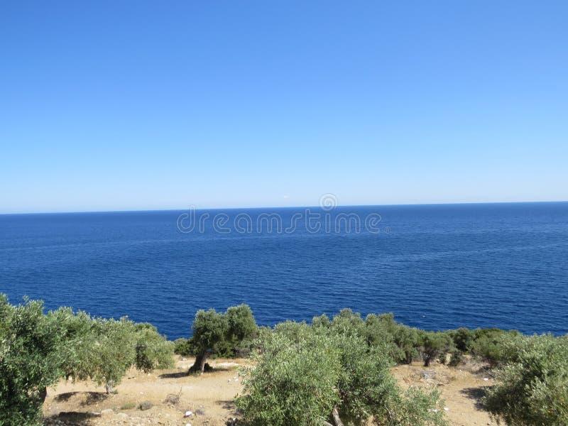Déplacement et partie d'amusement d'été Horizon de bleu de forêt d'oliviers Île de Thassos La Grèce photos stock