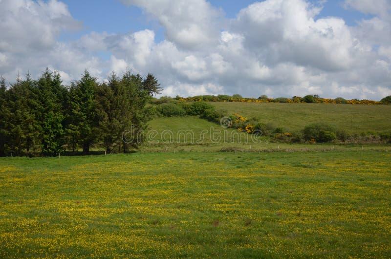 Déplacement par la belle Irlande au printemps de 2016 photo stock