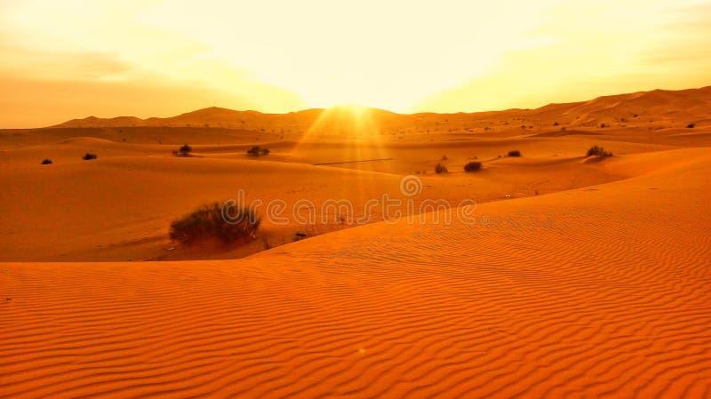 Désert algérien photos libres de droits