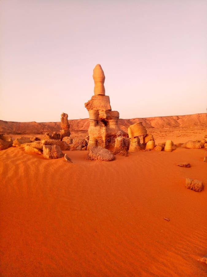 Désert algérien photo stock
