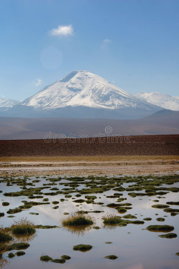 Désert d'Atacama chilien photo stock