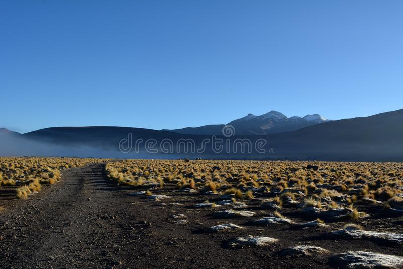 Désert d'Atacama - vallée de geysers en EL Tatio au Chili photographie stock