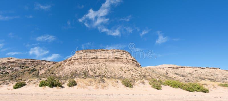Désert dans le Patagonia. photographie stock libre de droits