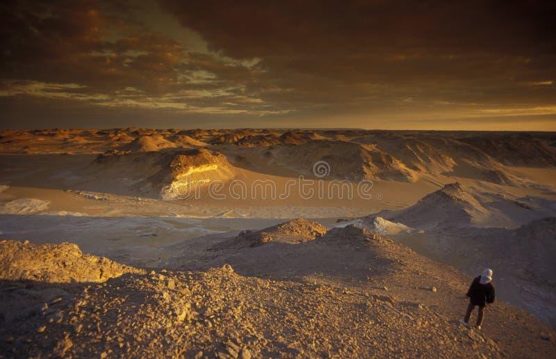 DÉSERT DE BLANC DE L'AFRIQUE EGYPTE SAHARA FARAFRA image libre de droits